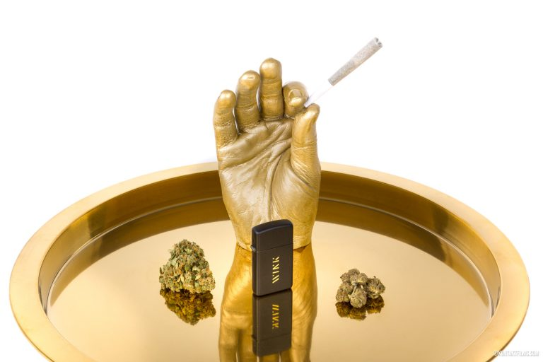 TREC Brands – Wink Hand Flower | Kontakt Films