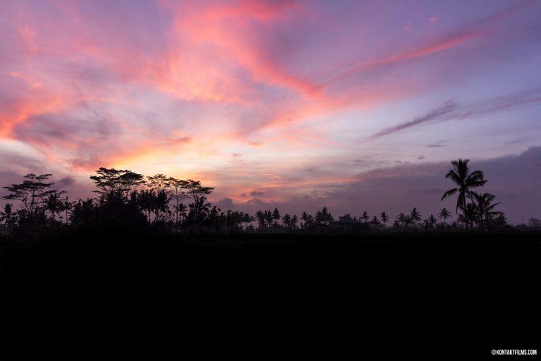 Ubud, Bali | Kontakt Films