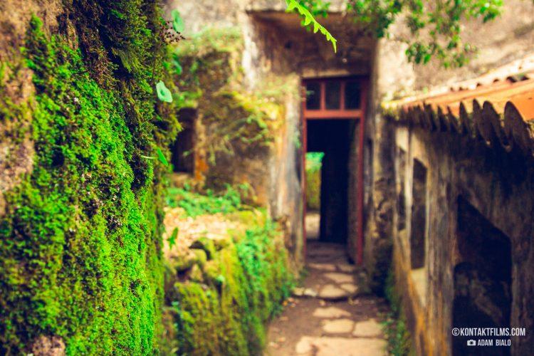 Kontakt_Portugal-05_Nature_8455